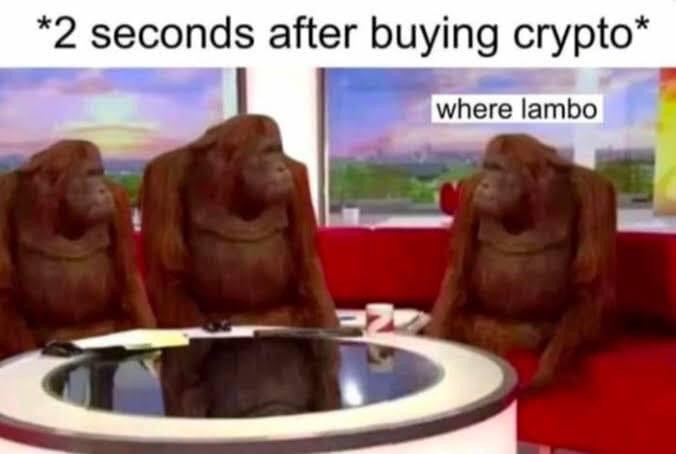 2 seconds after buying crypto - where lambo apes meme