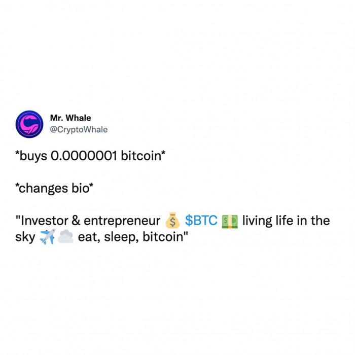 Buy 0.0000001 bitcoin. Change bio: Investor & entrepreneur. Eat, sleep, bitcoin.